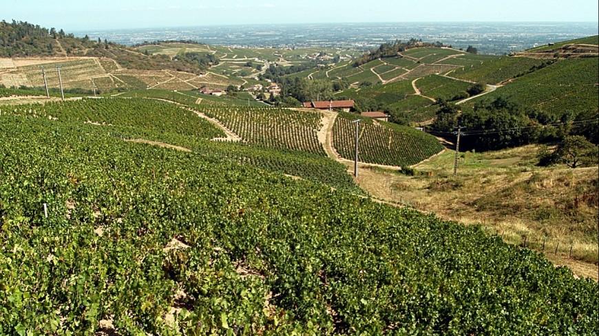 Partir travailler ailleurs : Auvergne-Rhône-Alpes est la région qui fait le plus rêver !