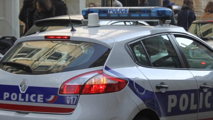 Grenoble: un incendiaire interpellé