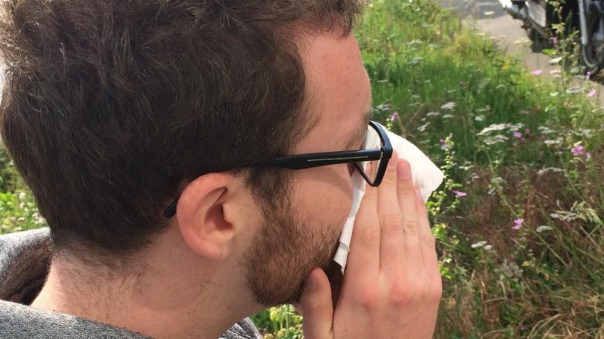 Allergies : gare au bouleau !