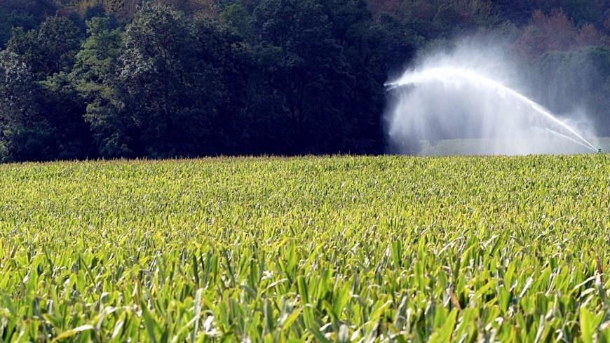 Grenoble interdit les pesticides