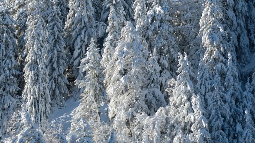 Isère : un skieur se tue aux Sept Laux
