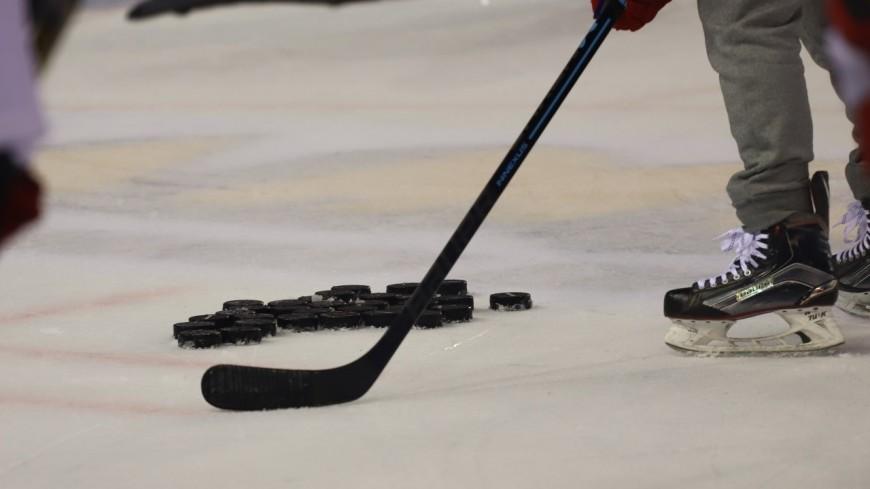 Hockey : les Brûleurs de Loups de nouveau victorieux contre Chamonix