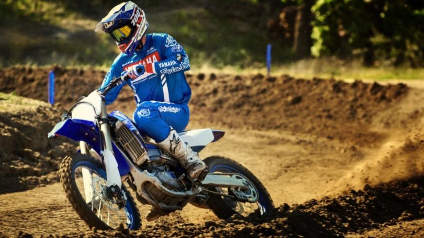 Rives : des espèces menacées dans la carrière devenue terrain de motocross