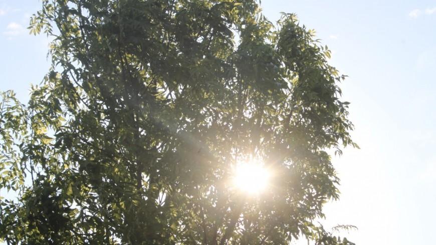 Grenoble : 42 jours sans pluie, nouveau record