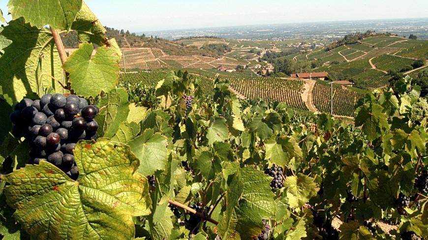 Laurent Wauquiez propose un plan de relance pour le tourisme en Auvergne-Rhône-Alpes