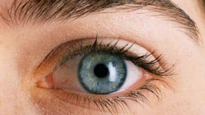 Illusion d'optique : votre cerveau va colorer tout seul cette photo en noir et blanc