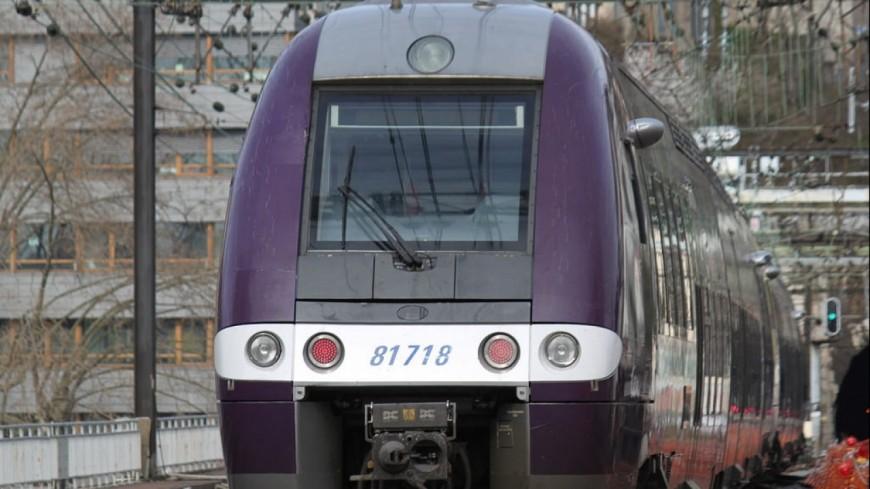 Grève à la SNCF : 2 TER sur 3 ce lundi en Auvergne-Rhône-Alpes